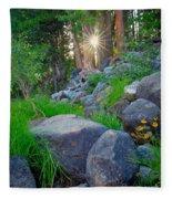 Sun In The Sequoias Fleece Blanket