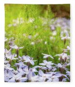 Sun-kissed Meadows With White Star Flowers Fleece Blanket