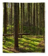 Sun Rays In Forest Fleece Blanket