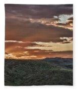 Sun Rays On Colorado Sage Fleece Blanket