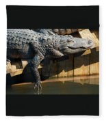 Sunbathing Gator Fleece Blanket