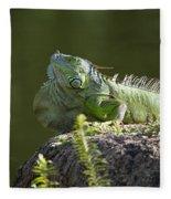 Sunbathing Fleece Blanket
