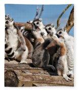 Sunbathing Ring-tailed Lemurs Fleece Blanket