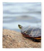 Sunbathing Turtle Fleece Blanket