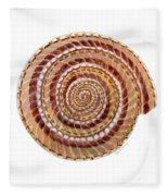 Sundial Shell Fleece Blanket