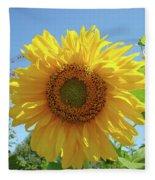 Sunflower Art Prints Sun Flower 2 Giclee Prints Baslee Troutman Fleece Blanket