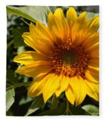 Sunflower Art- Summer Sun- Sunflowers Fleece Blanket