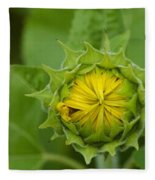 Sunflower Bud Fleece Blanket