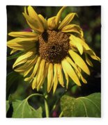 Sunflower Close Up Fleece Blanket