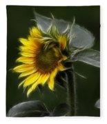 Sunflower Fractalius Beauty Fleece Blanket