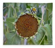 Sunflower Seedhead Fleece Blanket