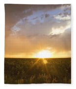 Sunflower Set Fleece Blanket