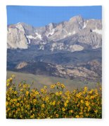 2a6742-sunflowers And Mount Humphreys  Fleece Blanket