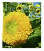 Sunflowers Art Prints Sun Flower Giclee Prints Baslee Troutman Fleece Blanket
