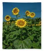 Sunflowers Weldon Spring Mo Ver1_dsc9821_16 Fleece Blanket