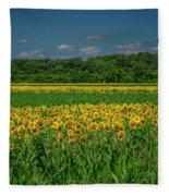Sunflowers Weldon Spring Mo_dsc9830_16 Fleece Blanket