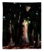 Sunlight And Shadows - Eucalyptus Majesties Fleece Blanket