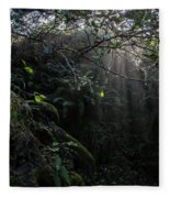 Sunlight Falling Into Glen With Bright Leaves, Vertical Fleece Blanket