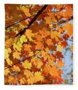Sunlight In Maple Tree Fleece Blanket