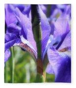 Sunlight On Blue Irises Fleece Blanket