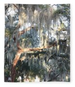 Sunlight On Mossy Tree Fleece Blanket