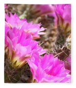 Sunlight On Pink Cactus Blooms Fleece Blanket