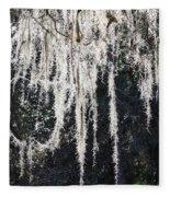 Sunlight Through Spanish Moss Fleece Blanket