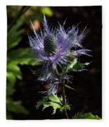 Sunlit Bloom Of Alpine Sea Holly Fleece Blanket
