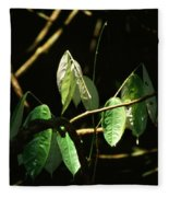 Sunlit Leaves Fleece Blanket