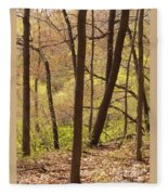 Sunlit Woods Fleece Blanket