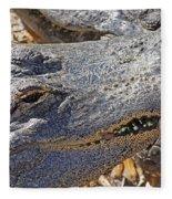 Sunning Alligator 2 Fleece Blanket