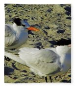 Sunning Terns Fleece Blanket