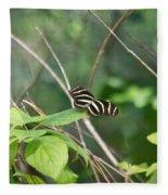 Sunning Zebra Longwing Butterfly Fleece Blanket