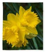 Sunny Daffodils Fleece Blanket