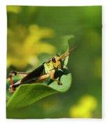 Green Grasshopper Fleece Blanket