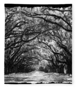 Sunny Southern Day - Black And White With Black Border Fleece Blanket