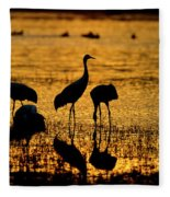 Sunrise At The Crane Pools Fleece Blanket