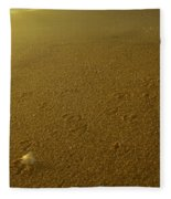 Sunrise Bird Beach Tracks Fleece Blanket