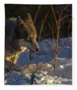 Sunrise Comes Fleece Blanket