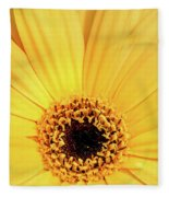 Sunrise Gerbera Fleece Blanket