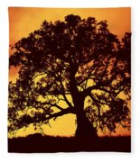 Sunrise Gum Fleece Blanket