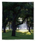 Sunrise In Pecan Grove Fleece Blanket