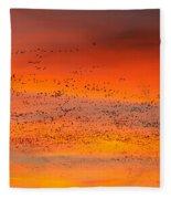 Sunrise Migration Fleece Blanket