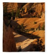Sunrise Point 9 Fleece Blanket