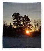 Sunrise Under Pine Tree Fleece Blanket