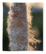 Sunset Cat Tail Lathrop California Fleece Blanket
