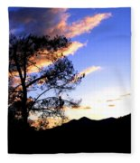 Sunset In The Highlands Fleece Blanket