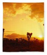 Sunset, Joshua Tree Park, California Fleece Blanket