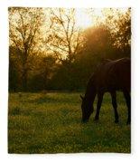 Sunset Over A Spring Meadow Fleece Blanket