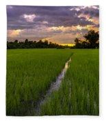 Sunset Rice Fields In Cambodia Fleece Blanket